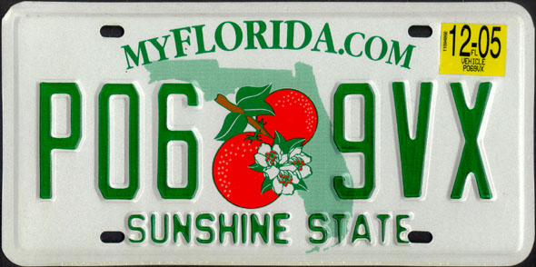 Florida State Seminoles Color Chrome Metal License Plate Frame NEW Free  Shipping! Gold