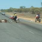Die modernen Cowboys von heute mit Motocross Bikes
