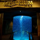 "Aquarium im Hotel Atlantis Jumeirah (Palmeninsel ""The Palm, Jumeirah"")"