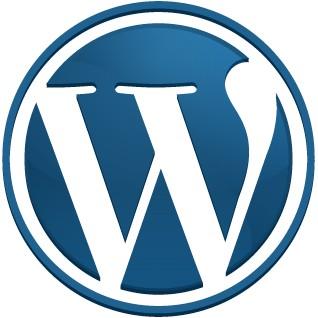 WordPress 2.9 Bugs